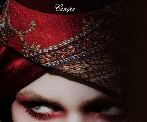 Nuovo look per il gruppo Canepa